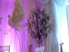 Gulubi ot cvetia